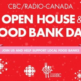 11.28.2015 / Performance on CBC Radio